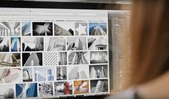 Adobe Stock: Tudo sobre Imagens para Creative Cloud 7
