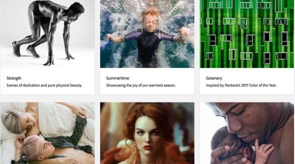 Adobe Stock: Tudo sobre Imagens para Creative Cloud 4