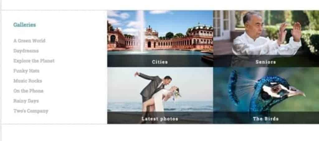Análise da Stock Photo Secrets [wpsm_custom_meta type=date field=year] 7