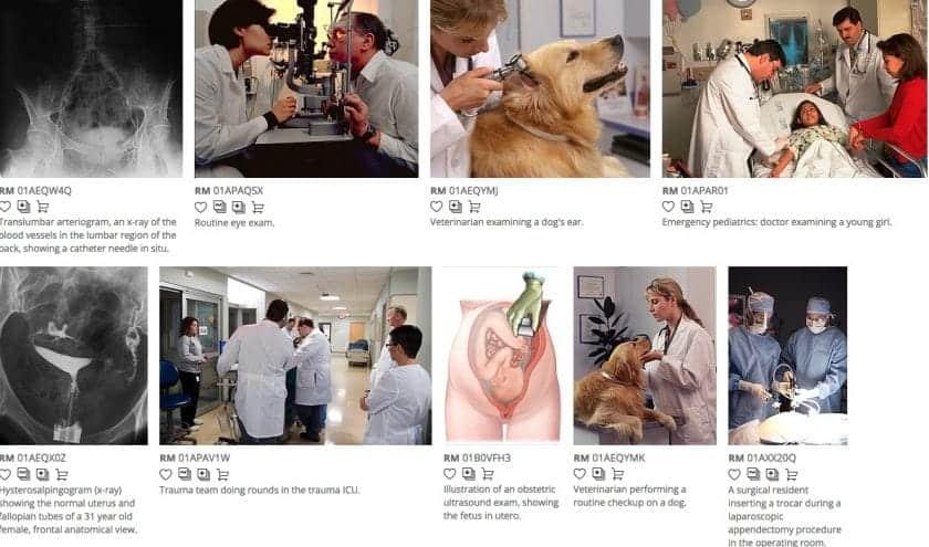 As Melhores fotografias da área Médica e sobre a (Covid-19) 12