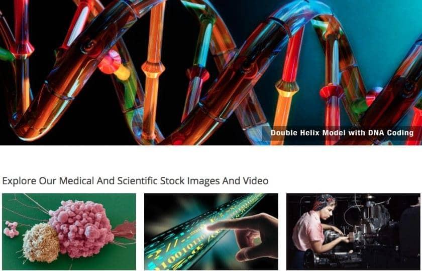 As Melhores fotos de stock da área médica incluindo imagens sobre o coronavírus (Covid-19) 15
