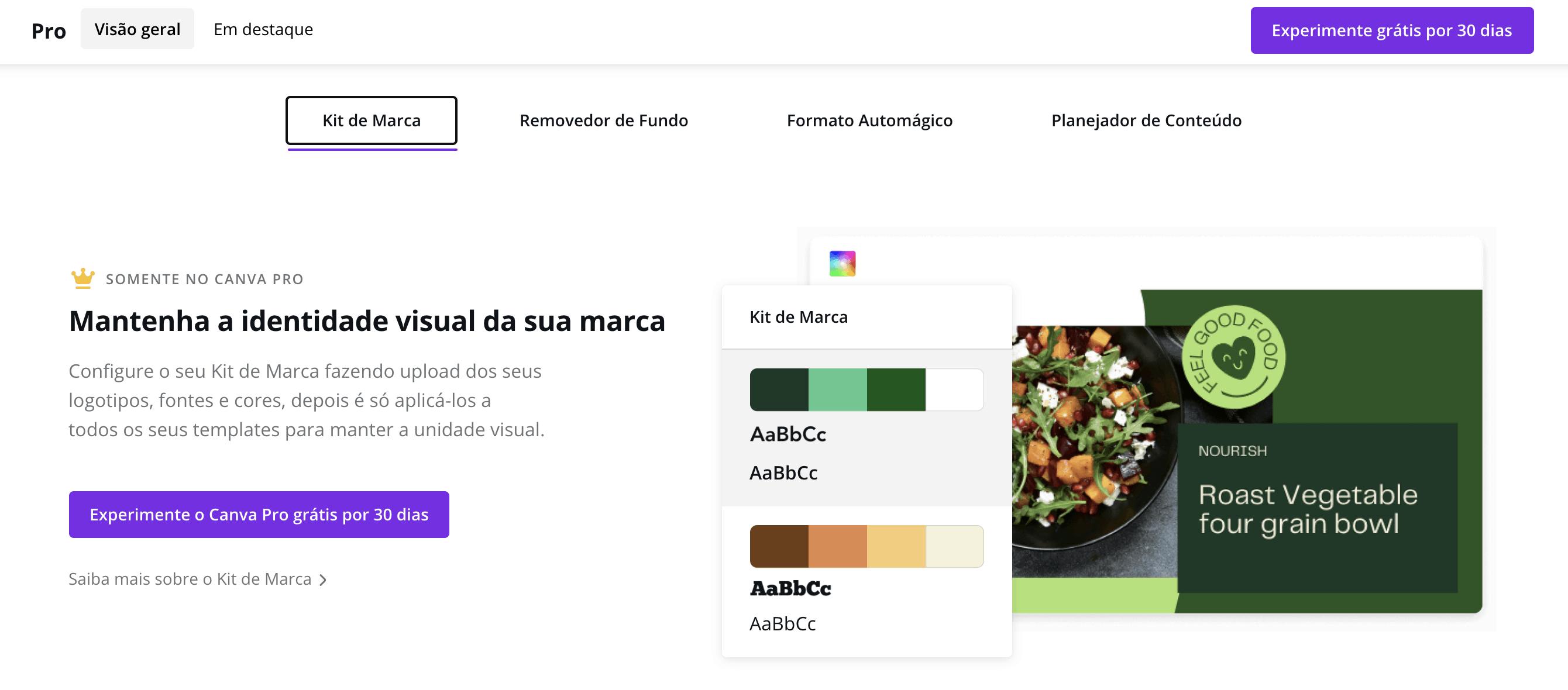 Análise Canva Pro: uma ferramenta de design com imagens de stock ilimitadas! 16